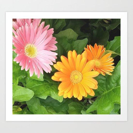 Summer Flowers Pink Yellow Orange Art Print