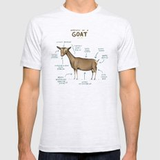 Anatomy of a Goat LARGE Ash Grey Mens Fitted Tee