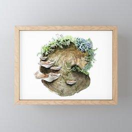 Mossy Log Framed Mini Art Print
