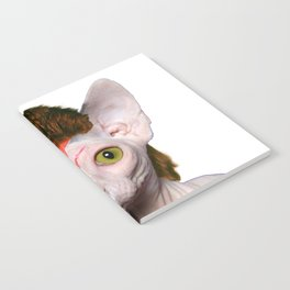 Bowie Cat Notebook