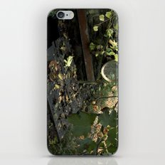 otoño iPhone & iPod Skin