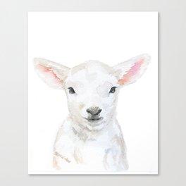 Lamb Face Watercolor Canvas Print