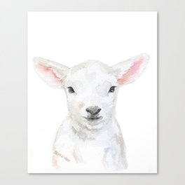 Lamb Face Watercolor Canvas Print