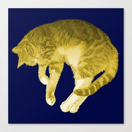 Beautiful Yellow Cat Illustration Canvas Print