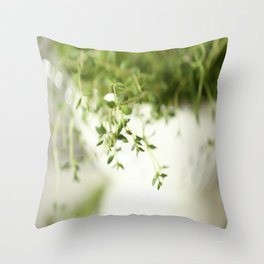 Fresh Herb In A White Pot #decor #society6 #buyart Throw Pillow