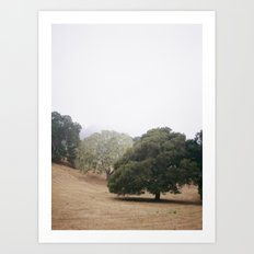Garden on Film 1.5 Art Print
