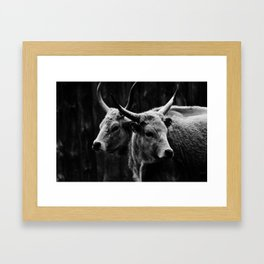two headed beast Framed Art Print