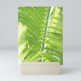 Palm leaves in summer light Mini Art Print