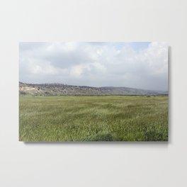 Elah Valley, Israel Metal Print