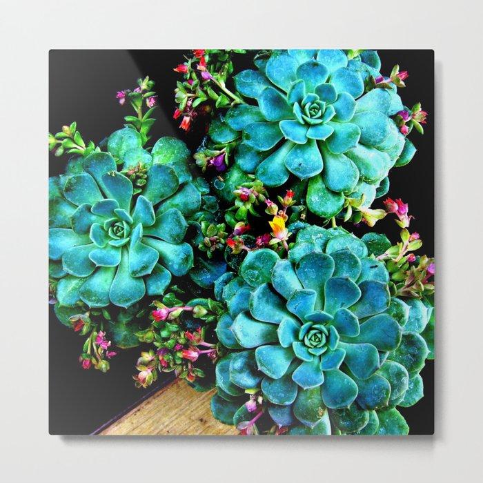 Beautiful Autumn plant green, blue Metal Print
