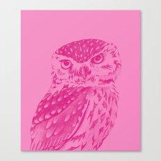 Pinkowl Canvas Print