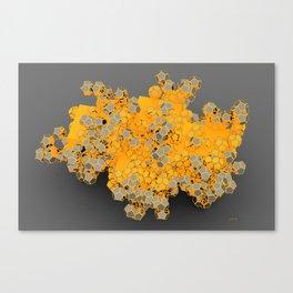 Silverched Dodeka Canvas Print