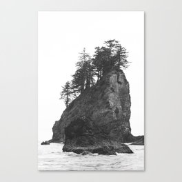 Rocks at Second Beach in Olympic National Park, Washington, USA Canvas Print
