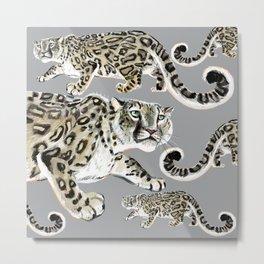 Snow leopard in grey Metal Print