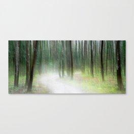 Sentiero Luminoso Canvas Print