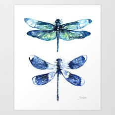 Dragonfly Wings Art Print