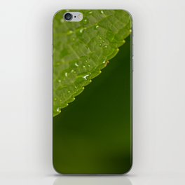 Floral Leaf 05   Nature Photography iPhone Skin