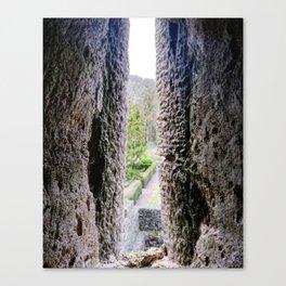 Blarney Castle, Ireland Canvas Print