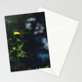 Reflection in the river Stationery Cards