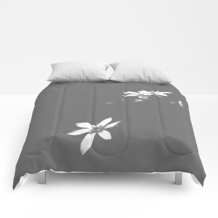 Love Eternal Comforters