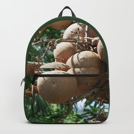 Cannonball Fruit Backpack