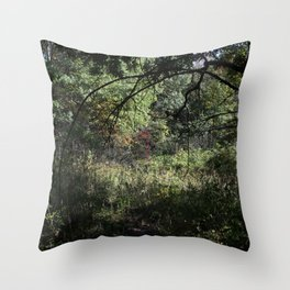 Autumnal Equinox No.6 Throw Pillow