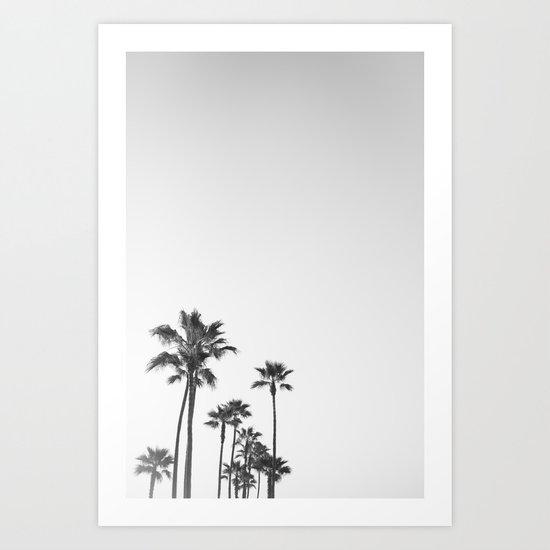black and white californ