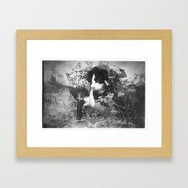 Warrior Cat Framed Art Print