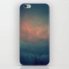 On The Cusp iPhone & iPod Skin
