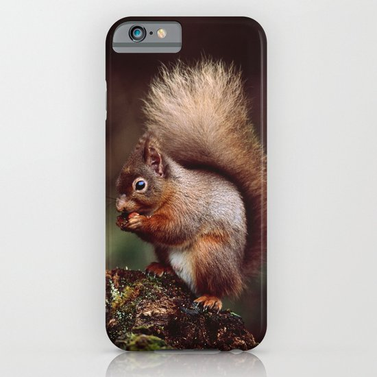RED SQUIRREL. iPhone & iPod Case