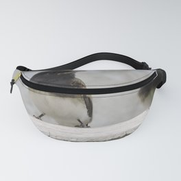 Young Black Phoebes Fanny Pack