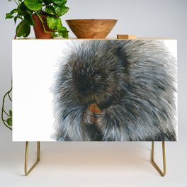 Vinnie the Porcupine by Teresa Thompson Credenza