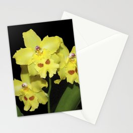 Glorious Golden Orchid - Odontonia Yellow Parade Alpine Stationery Cards