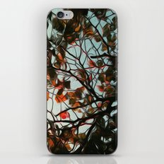 Seasonal iPhone & iPod Skin