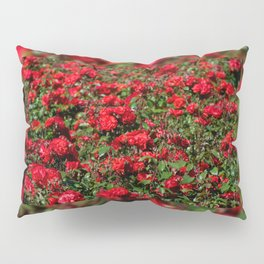 Red roses bunches grow in park Pillow Sham