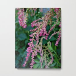 Garden Garnish Metal Print
