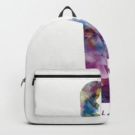 Delaware Backpack