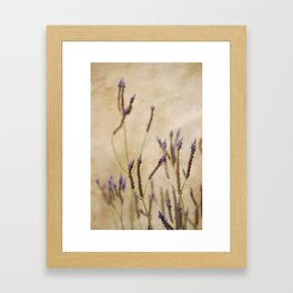 Stick Flowers Framed Art Print