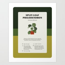 Split-Leaf Philodendron Care Art Print