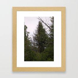 Life/Death Framed Art Print