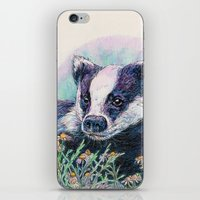 badger iPhone & iPod Skins featuring Badger by Sarah Jane Bradley