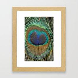 Rainbow feather Framed Art Print