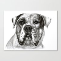 bulldog Canvas Prints featuring Bulldog by Danguole Serstinskaja