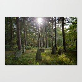 Doll Tor stone circle Canvas Print