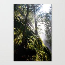 """""""Good Timber"""" Canvas Print"""