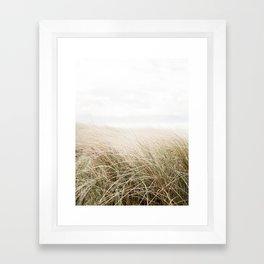 Dune grass   Ireland travel photogragraphy print   At the beach Framed Art Print