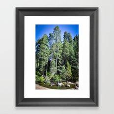 Tall Beauty Framed Art Print