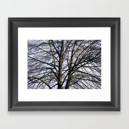 Stained Glass Tree Framed Art Print