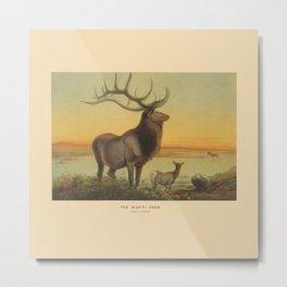The Wapiti Deer Metal Print