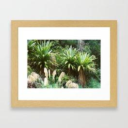 'Dragon Tree' Forest Framed Art Print